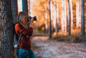 leśna fotopułapka na zwierzęta